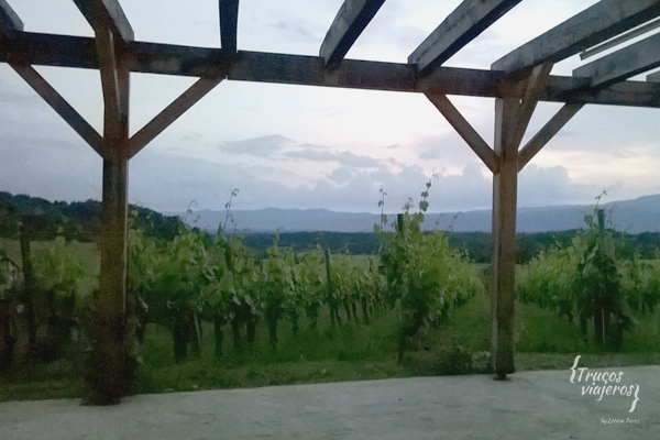 Suklje-winery-vineyards-Slovenia
